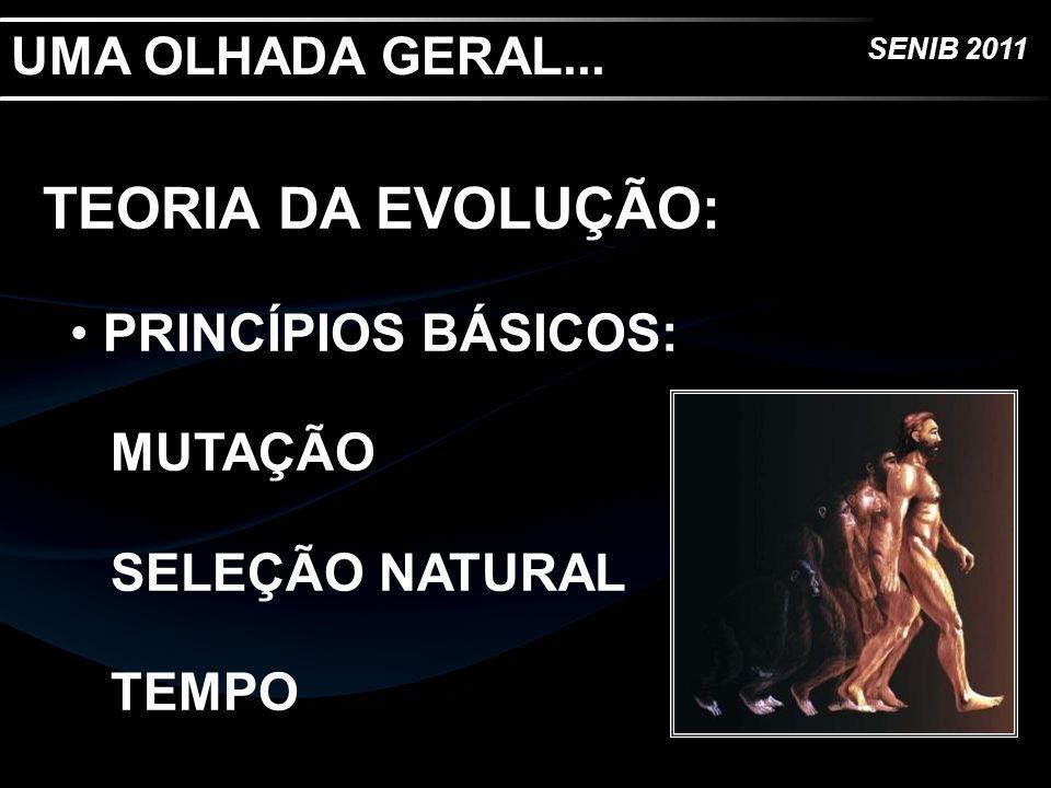 SENIB 2011 UMA OLHADA GERAL... TEORIA DA EVOLUÇÃO: PRINCÍPIOS BÁSICOS: MUTAÇÃO SELEÇÃO NATURAL TEMPO