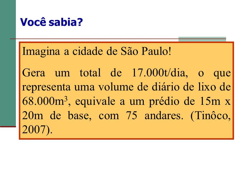 Você sabia? Imagina a cidade de São Paulo! Gera um total de 17.000t/dia, o que representa uma volume de diário de lixo de 68.000m 3, equivale a um pré