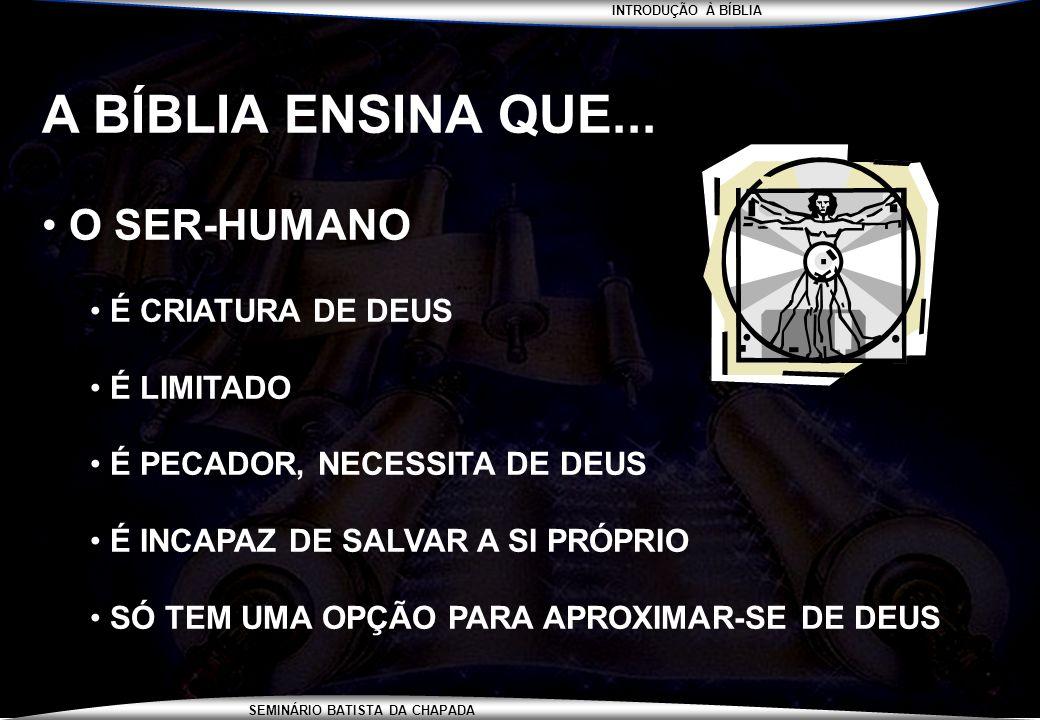 INTRODUÇÃO À BÍBLIA SEMINÁRIO BATISTA DA CHAPADA A BÍBLIA ENSINA QUE... O SER-HUMANO É CRIATURA DE DEUS É LIMITADO É PECADOR, NECESSITA DE DEUS É INCA