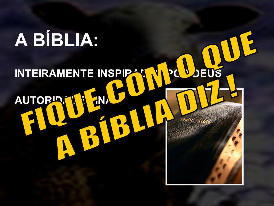 A BÍBLIA: INTEIRAMENTE INSPIRADAS POR DEUS AUTORIDADE FINAL
