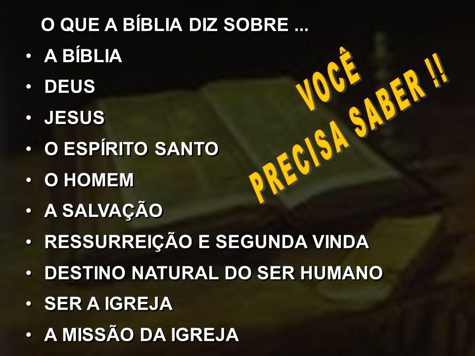 O QUE A BÍBLIA DIZ SOBRE... A BÍBLIA DEUS JESUS O ESPÍRITO SANTO O HOMEM A SALVAÇÃO RESSURREIÇÃO E SEGUNDA VINDA DESTINO NATURAL DO SER HUMANO SER A I
