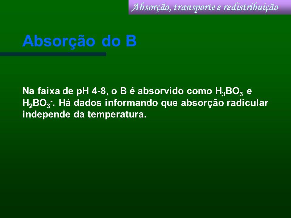 Absorção do B Na faixa de pH 4-8, o B é absorvido como H 3 BO 3 e H 2 BO 3 -. Há dados informando que absorção radicular independe da temperatura. Abs
