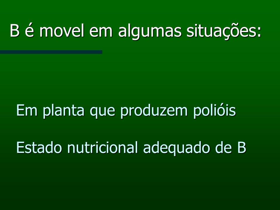 Em planta que produzem polióis Estado nutricional adequado de B B é movel em algumas situações: