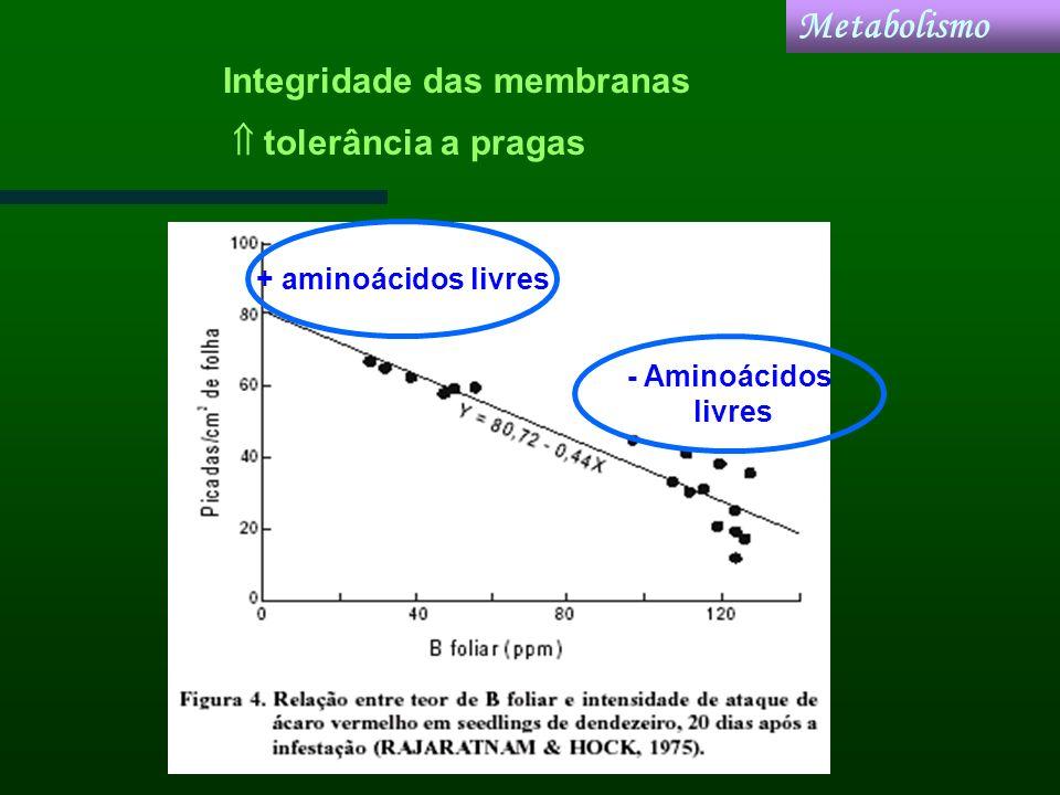 tolerância a pragas + aminoácidos livres - Aminoácidos livres Metabolismo Integridade das membranas
