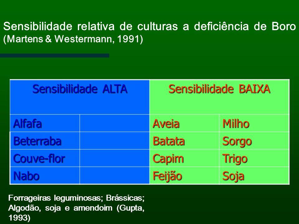 Sensibilidade relativa de culturas a deficiência de Boro (Martens & Westermann, 1991) Sensibilidade ALTA Sensibilidade BAIXA AlfafaAveiaMilho Beterrab