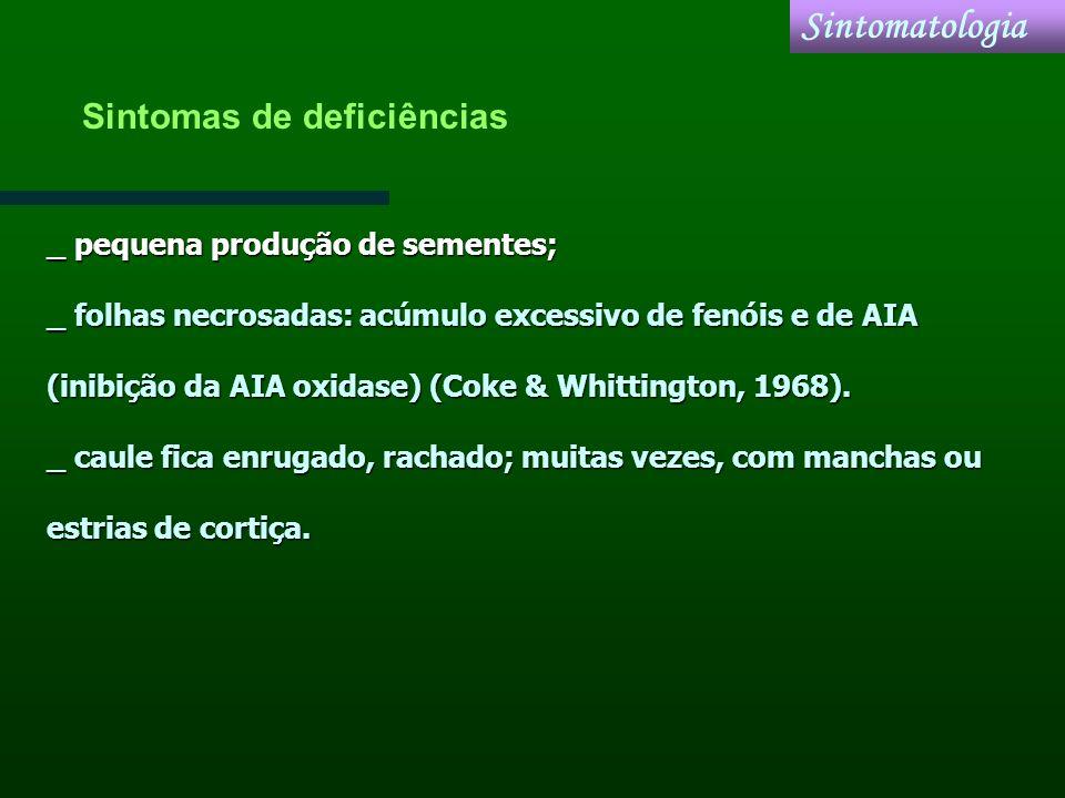 _ pequena produção de sementes; _ folhas necrosadas: acúmulo excessivo de fenóis e de AIA (inibição da AIA oxidase) (Coke & Whittington, 1968). _ caul