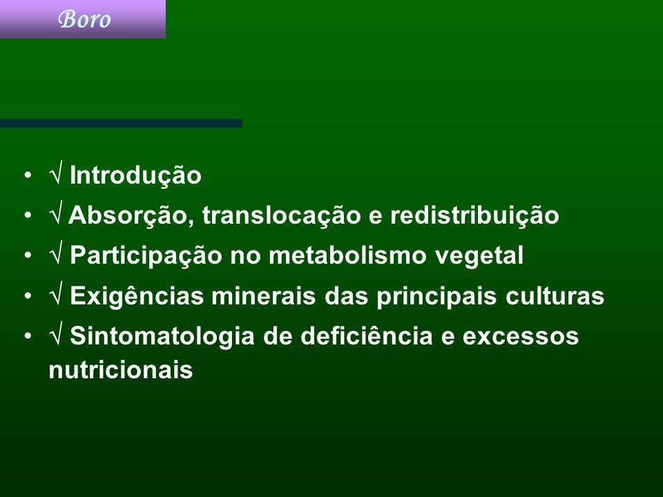 Boro Introdução Absorção, translocação e redistribuição Participação no metabolismo vegetal Exigências minerais das principais culturas Sintomatologia