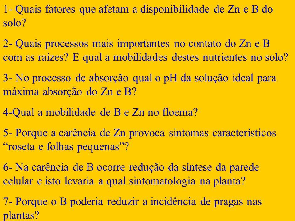 1- Quais fatores que afetam a disponibilidade de Zn e B do solo? 2- Quais processos mais importantes no contato do Zn e B com as raízes? E qual a mobi