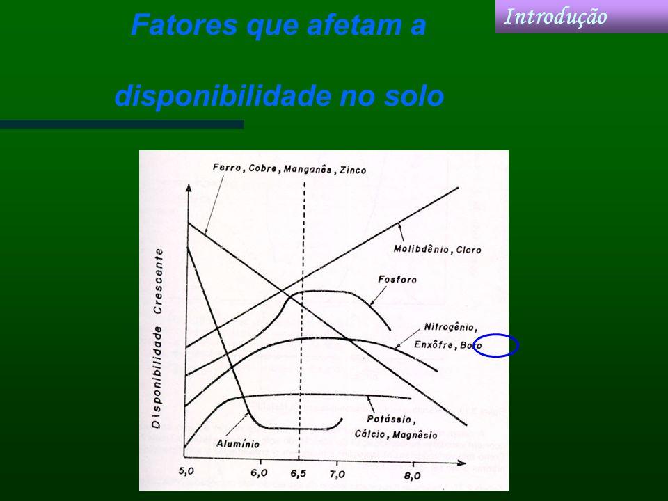 Fatores que afetam a disponibilidade no solo Introdução