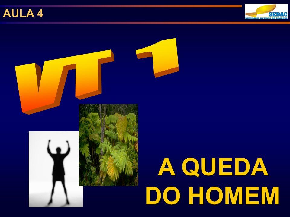 AULA 4 A QUEDA DO HOMEM