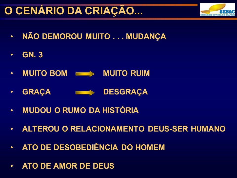DEUS COMEÇOU A REALIZAR SEU PLANO REDENTOR A QUEDA DO HOMEM...