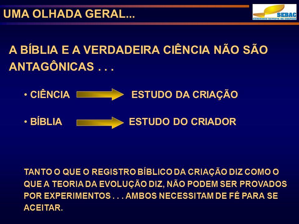 UMA OLHADA GERAL...A BÍBLIA E A VERDADEIRA CIÊNCIA NÃO SÃO ANTAGÔNICAS...
