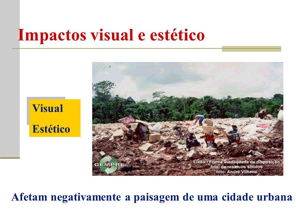 Impactos visual e estético Visual Estético Afetam negativamente a paisagem de uma cidade urbana