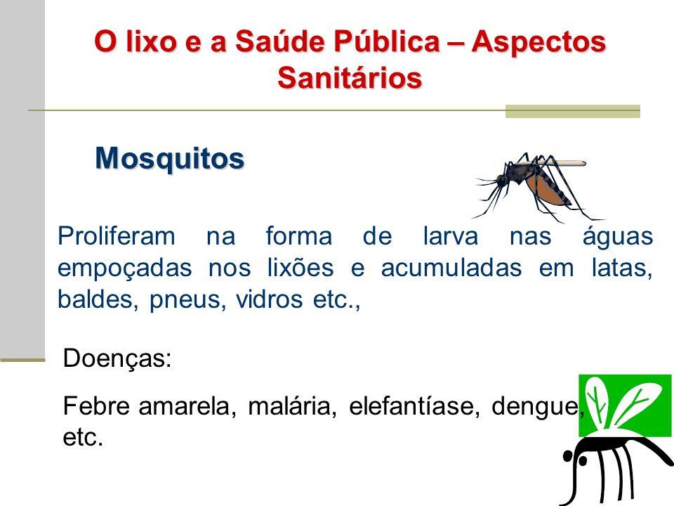 O lixo e a Saúde Pública – Aspectos Sanitários Mosquitos Proliferam na forma de larva nas águas empoçadas nos lixões e acumuladas em latas, baldes, pneus, vidros etc., Doenças: Febre amarela, malária, elefantíase, dengue, etc.