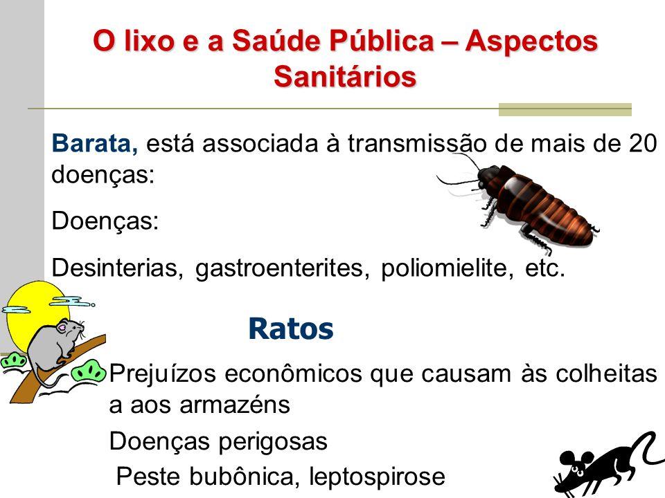O lixo e a Saúde Pública – Aspectos Sanitários Barata, está associada à transmissão de mais de 20 doenças: Doenças: Desinterias, gastroenterites, poliomielite, etc.