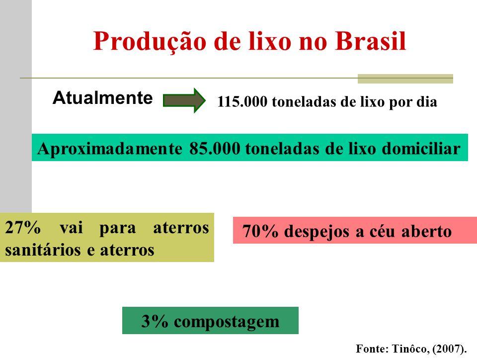 Produção de lixo no Brasil Atualmente 115.000 toneladas de lixo por dia Aproximadamente 85.000 toneladas de lixo domiciliar 27% vai para aterros sanitários e aterros 70% despejos a céu aberto 3% compostagem Fonte: Tinôco, (2007).