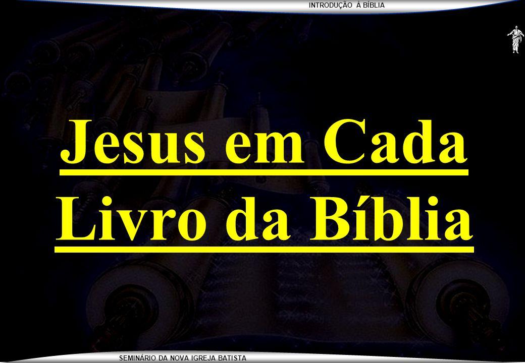 INTRODUÇÃO À BÍBLIA SEMINÁRIO DA NOVA IGREJA BATISTA Jesus em Cada Livro da Bíblia