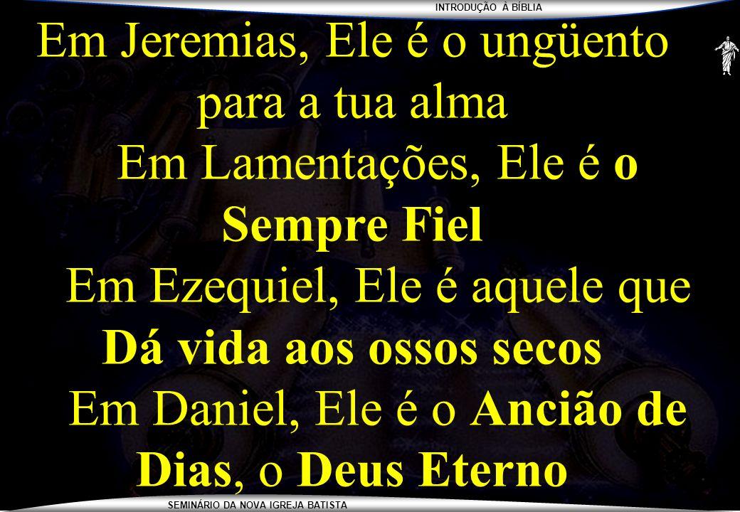 INTRODUÇÃO À BÍBLIA SEMINÁRIO DA NOVA IGREJA BATISTA Em Jeremias, Ele é o ungüento para a tua alma Em Lamentações, Ele é o Sempre Fiel Em Ezequiel, El