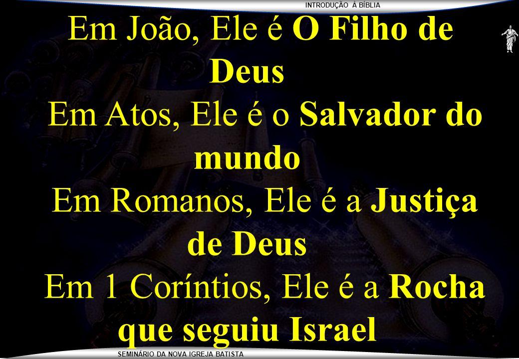 INTRODUÇÃO À BÍBLIA SEMINÁRIO DA NOVA IGREJA BATISTA Em João, Ele é O Filho de Deus Em Atos, Ele é o Salvador do mundo Em Romanos, Ele é a Justiça de