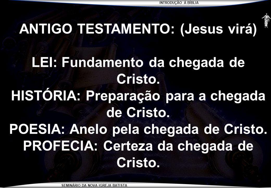 INTRODUÇÃO À BÍBLIA SEMINÁRIO DA NOVA IGREJA BATISTA ANTIGO TESTAMENTO: (Jesus virá) LEI: Fundamento da chegada de Cristo. HISTÓRIA: Preparação para a