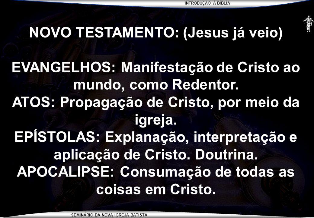 INTRODUÇÃO À BÍBLIA SEMINÁRIO DA NOVA IGREJA BATISTA NOVO TESTAMENTO: (Jesus já veio) EVANGELHOS: Manifestação de Cristo ao mundo, como Redentor. ATOS