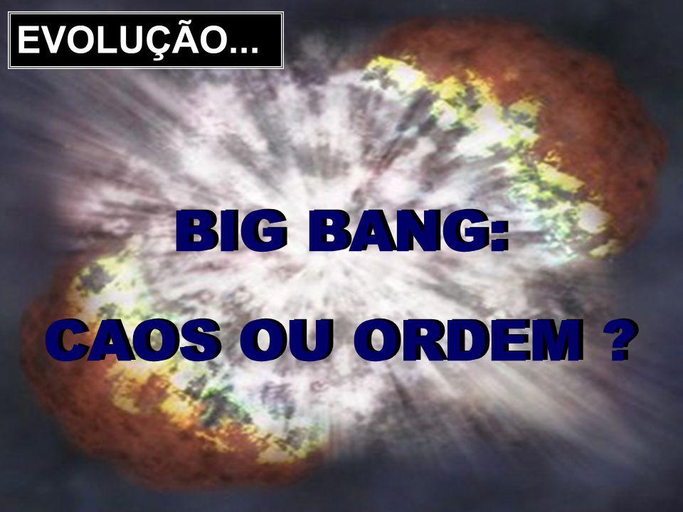SENIB 2011 EVOLUÇÃO... BIG BANG: CAOS OU ORDEM ? BIG BANG: CAOS OU ORDEM ?