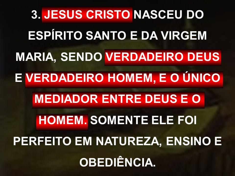 3. JESUS CRISTO NASCEU DO ESPÍRITO SANTO E DA VIRGEM MARIA, SENDO VERDADEIRO DEUS E VERDADEIRO HOMEM, E O ÚNICO MEDIADOR ENTRE DEUS E O HOMEM. SOMENTE