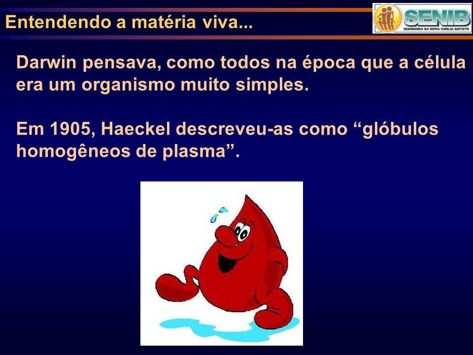 Entendendo a matéria viva... Darwin pensava, como todos na época que a célula era um organismo muito simples. Em 1905, Haeckel descreveu-as como glóbu