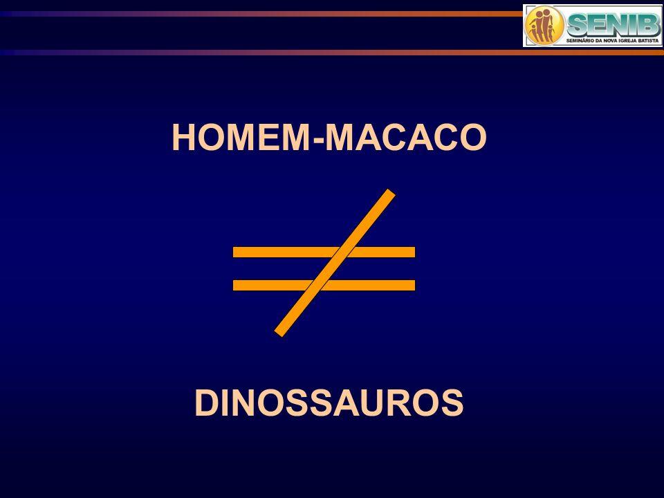 HOMEM-MACACO DINOSSAUROS