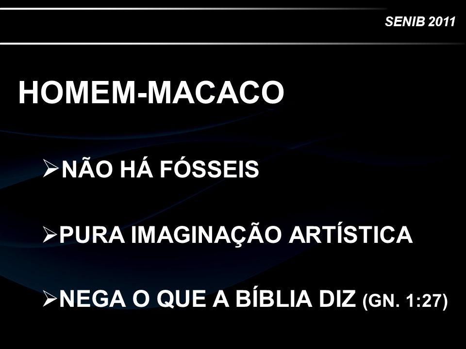 SENIB 2011 HOMEM-MACACO NÃO HÁ FÓSSEIS PURA IMAGINAÇÃO ARTÍSTICA NEGA O QUE A BÍBLIA DIZ (GN. 1:27)