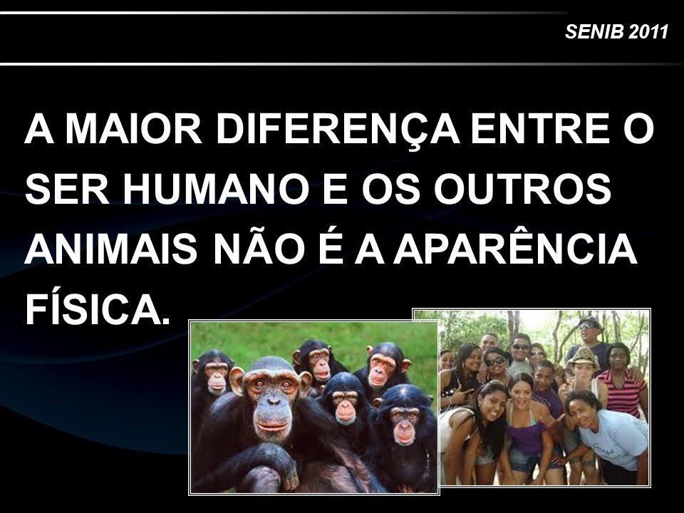 SENIB 2011 A MAIOR DIFERENÇA ENTRE O SER HUMANO E OS OUTROS ANIMAIS NÃO É A APARÊNCIA FÍSICA.