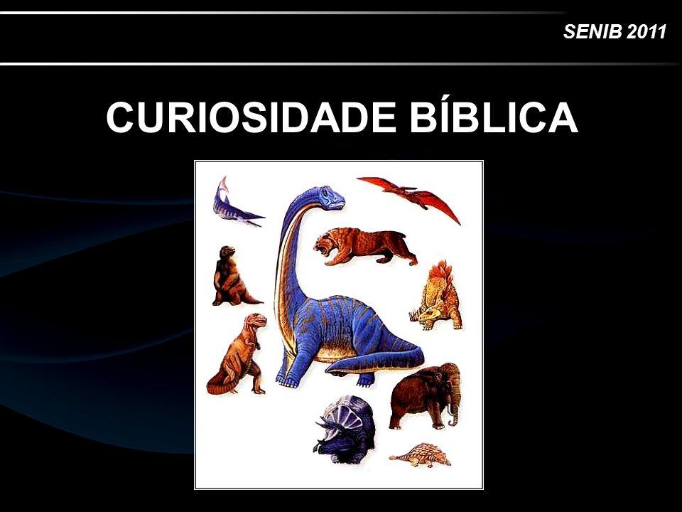 SENIB 2011 CURIOSIDADE BÍBLICA