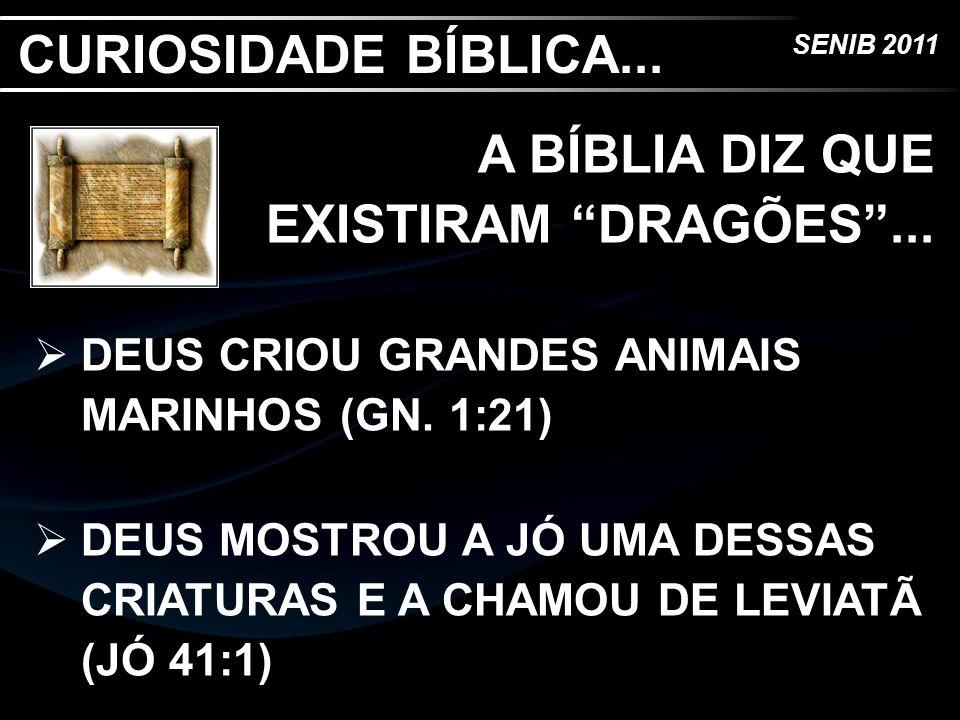 SENIB 2011 A BÍBLIA DIZ QUE EXISTIRAM DRAGÕES... DEUS CRIOU GRANDES ANIMAIS MARINHOS (GN. 1:21) DEUS MOSTROU A JÓ UMA DESSAS CRIATURAS E A CHAMOU DE L