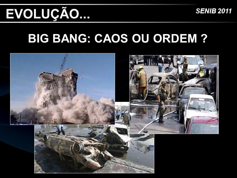SENIB 2011 EVOLUÇÃO...BIG BANG, A LÓGICA E... O QUE EXPLODIU .