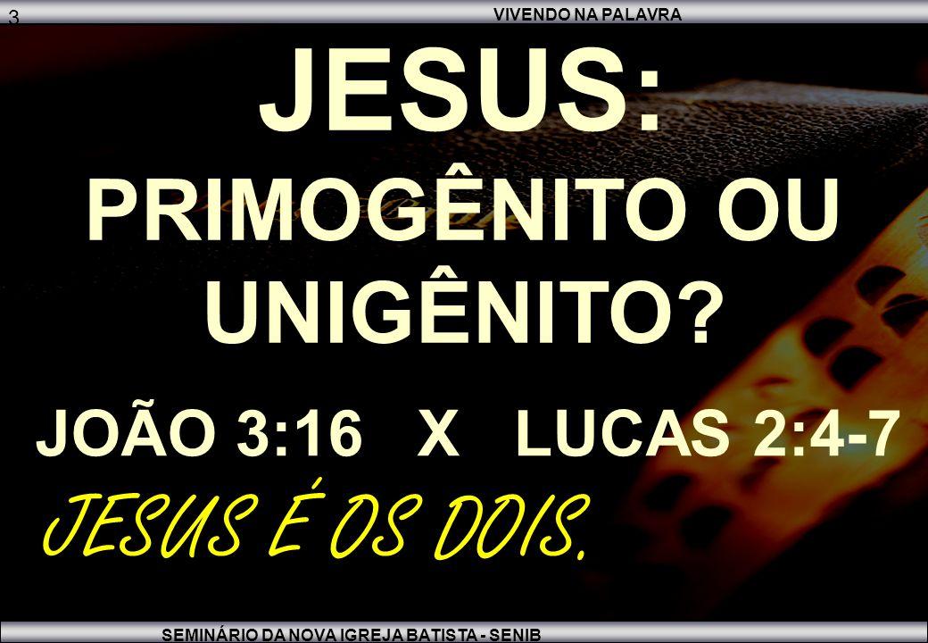 VIVENDO NA PALAVRA SEMINÁRIO DA NOVA IGREJA BATISTA - SENIB 3 JESUS: PRIMOGÊNITO OU UNIGÊNITO.