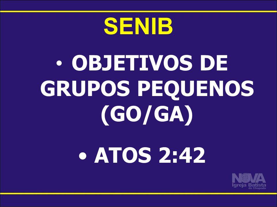 SENIB OBJETIVOS DE GRUPOS PEQUENOS (GO/GA) ATOS 2:42