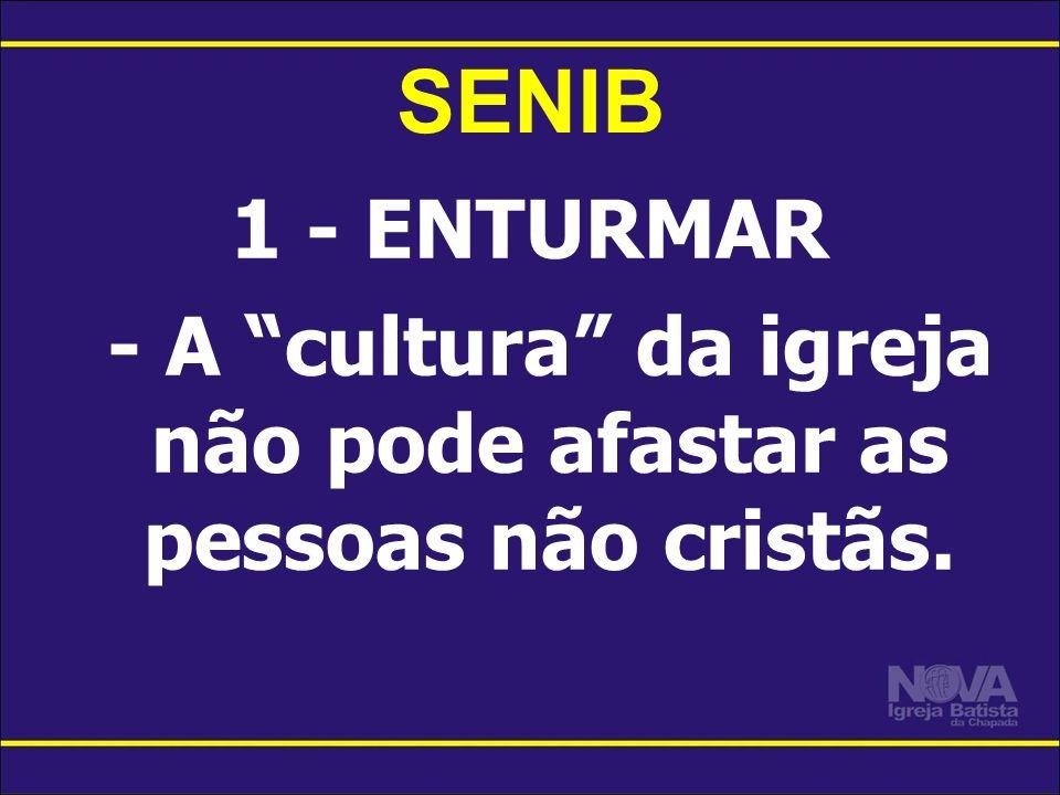 1 - ENTURMAR - A cultura da igreja não pode afastar as pessoas não cristãs. SENIB