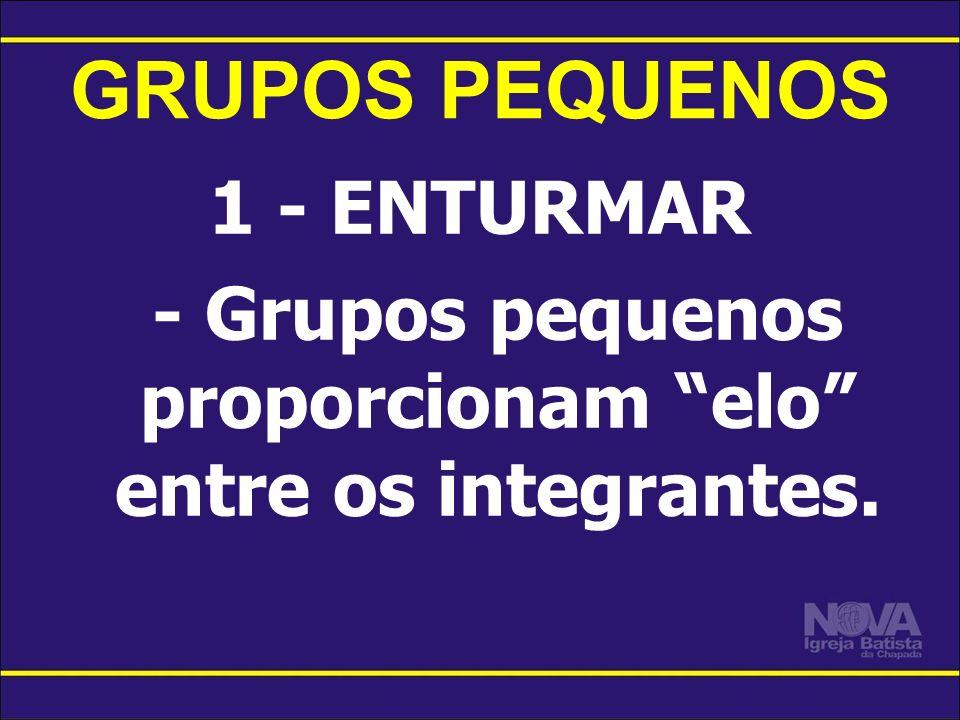 GRUPOS PEQUENOS 1 - ENTURMAR - Grupos pequenos proporcionam elo entre os integrantes.