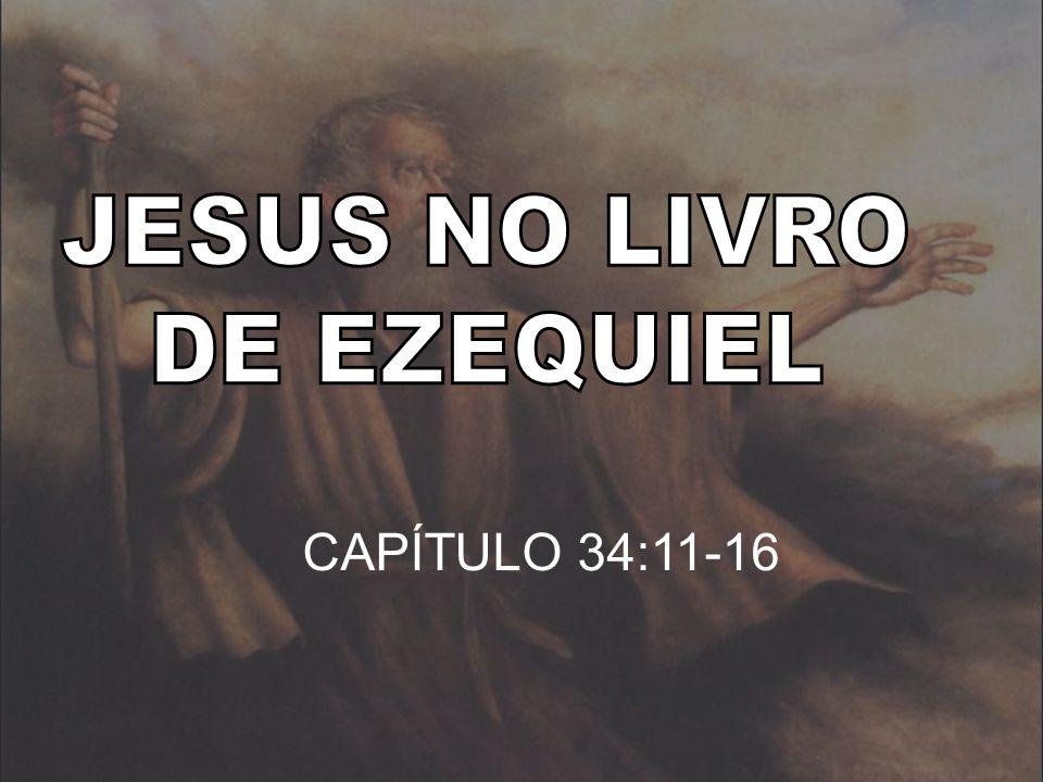 CAPÍTULO 34:11-16