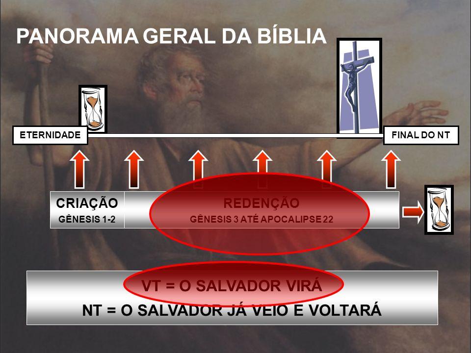 PANORAMA GERAL DA BÍBLIA FINAL DO NTETERNIDADE CRIAÇÃO GÊNESIS 1-2 REDENÇÃO GÊNESIS 3 ATÉ APOCALIPSE 22 VT = O SALVADOR VIRÁ NT = O SALVADOR JÁ VEIO E