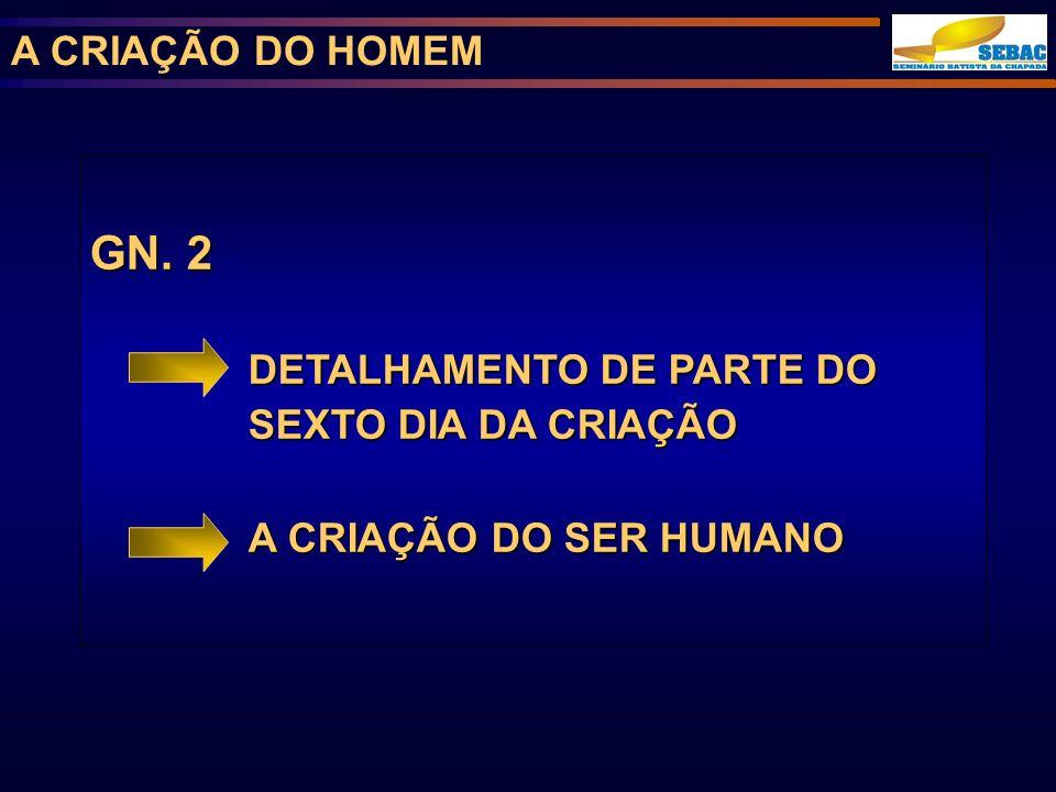 A CRIAÇÃO DO HOMEM GN. 2 DETALHAMENTO DE PARTE DO SEXTO DIA DA CRIAÇÃO A CRIAÇÃO DO SER HUMANO
