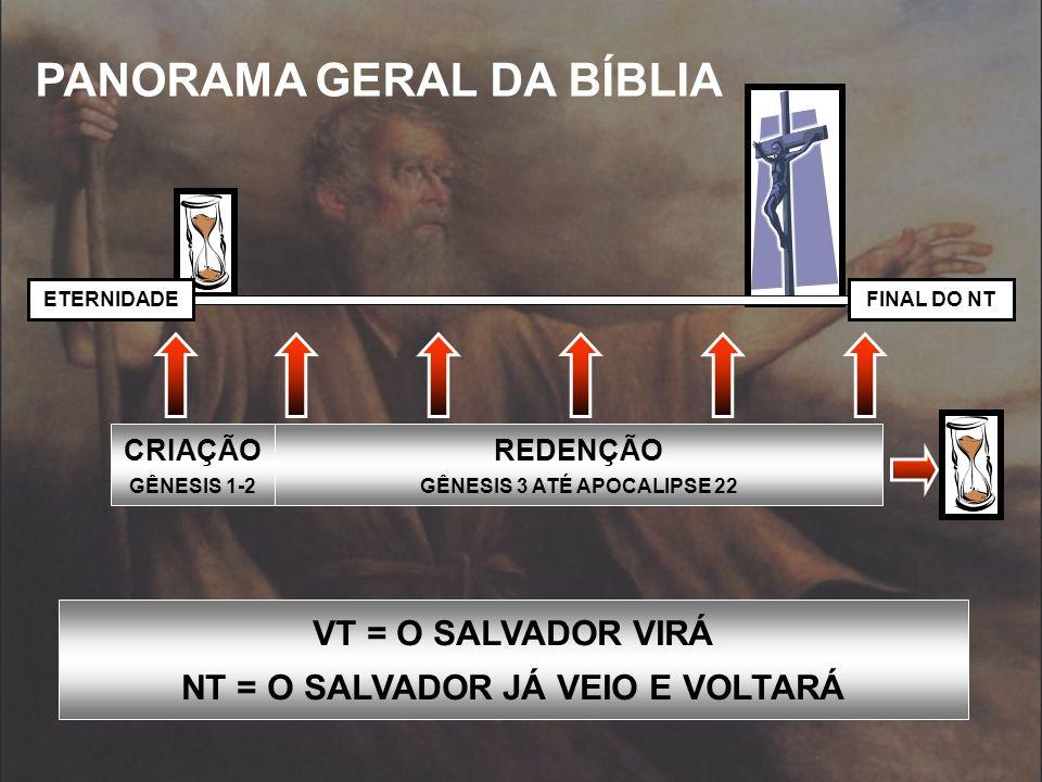 DEUS REVELOU SEU PLANO E SUA VERDADE AO LONGO DA HISTÓRIA DE MANEIRA FRACIONADA E PROGRESSIVA LC.