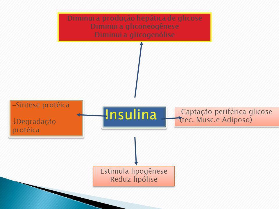 Insulina Diminui a produção hepática de glicose Diminui a gliconeogênese Diminui a glicogenólise Captação periférica glicose (tec. Musc.e Adiposo) Cap