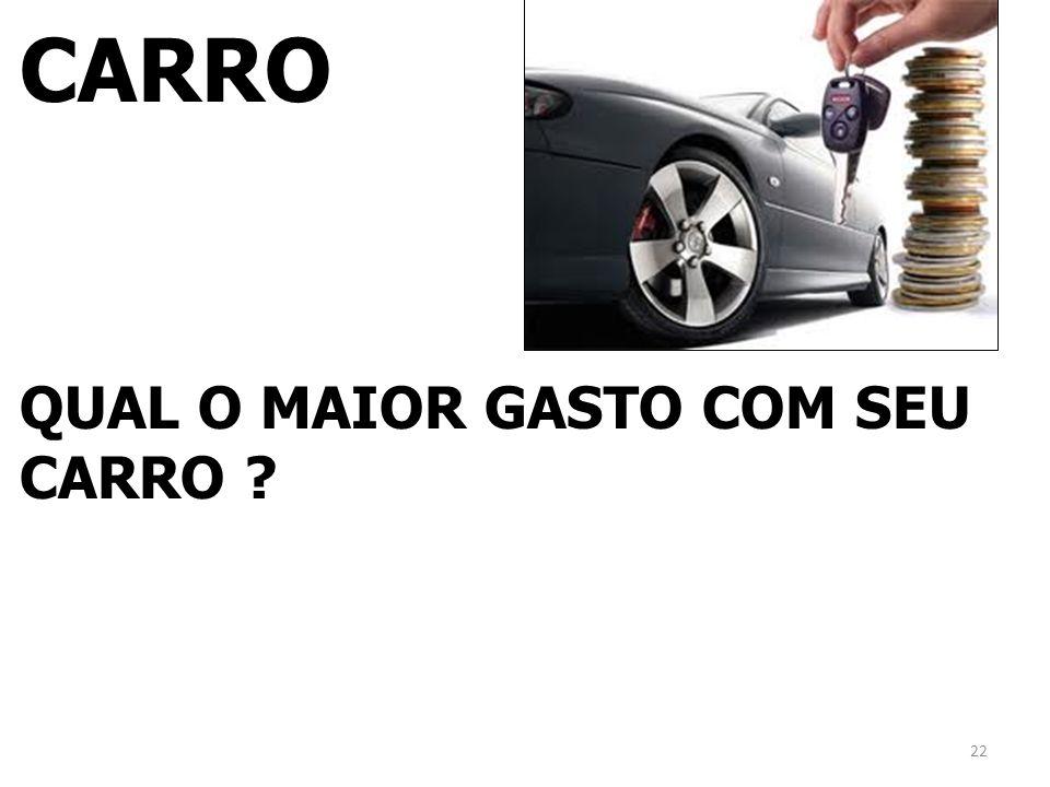 CARRO QUAL O MAIOR GASTO COM SEU CARRO ? 22