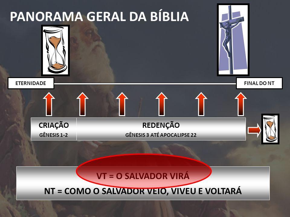 PANORAMA GERAL DA BÍBLIA CRIAÇÃO GÊNESIS 1-2 REDENÇÃO GÊNESIS 3 ATÉ APOCALIPSE 22 ETERNIDADEFINAL DO NT VT = O SALVADOR VIRÁ NT = COMO O SALVADOR VEIO