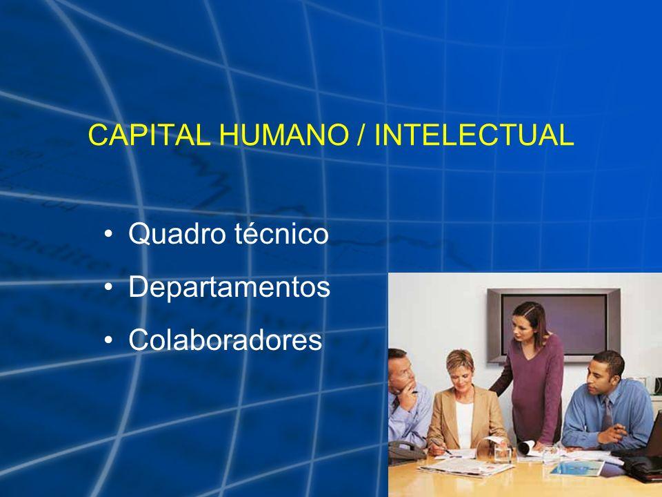 CAPITAL HUMANO / INTELECTUAL Quadro técnico Departamentos Colaboradores