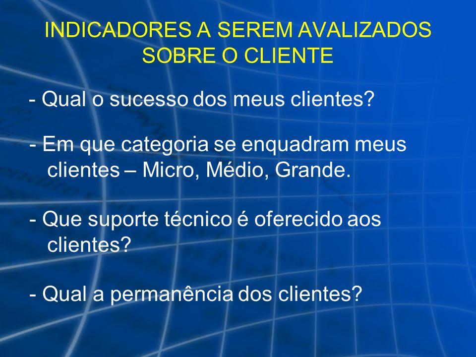 INDICADORES A SEREM AVALIZADOS SOBRE O CLIENTE - Qual o sucesso dos meus clientes? - Em que categoria se enquadram meus clientes – Micro, Médio, Grand