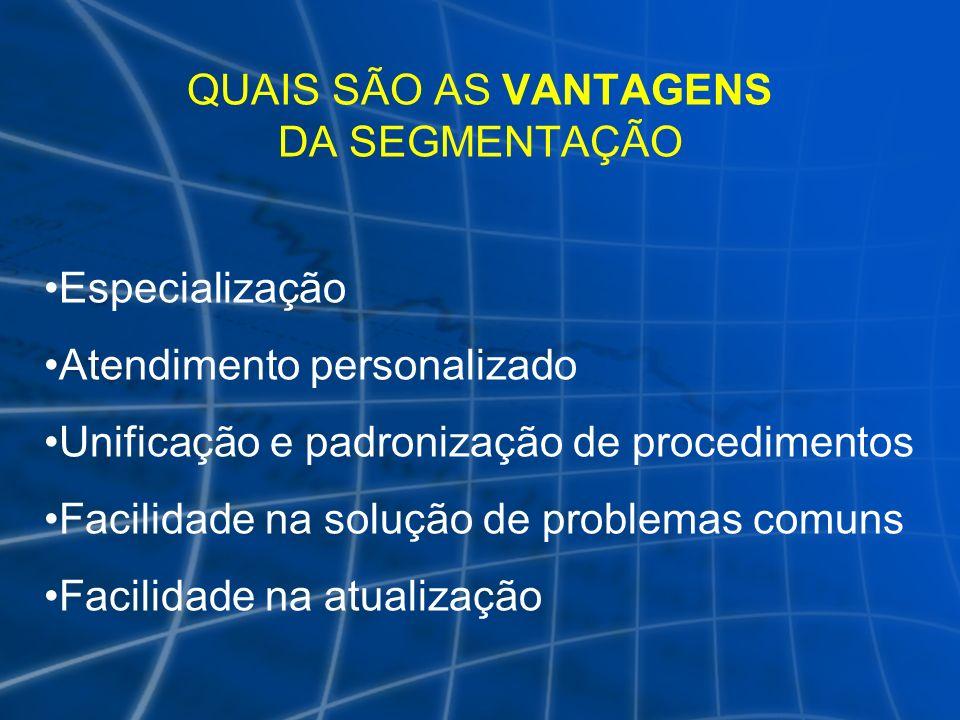 QUAIS SÃO AS VANTAGENS DA SEGMENTAÇÃO Especialização Atendimento personalizado Unificação e padronização de procedimentos Facilidade na solução de pro