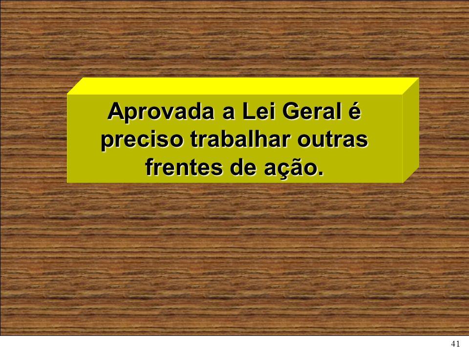 41 Aprovada a Lei Geral é preciso trabalhar outras frentes de ação.