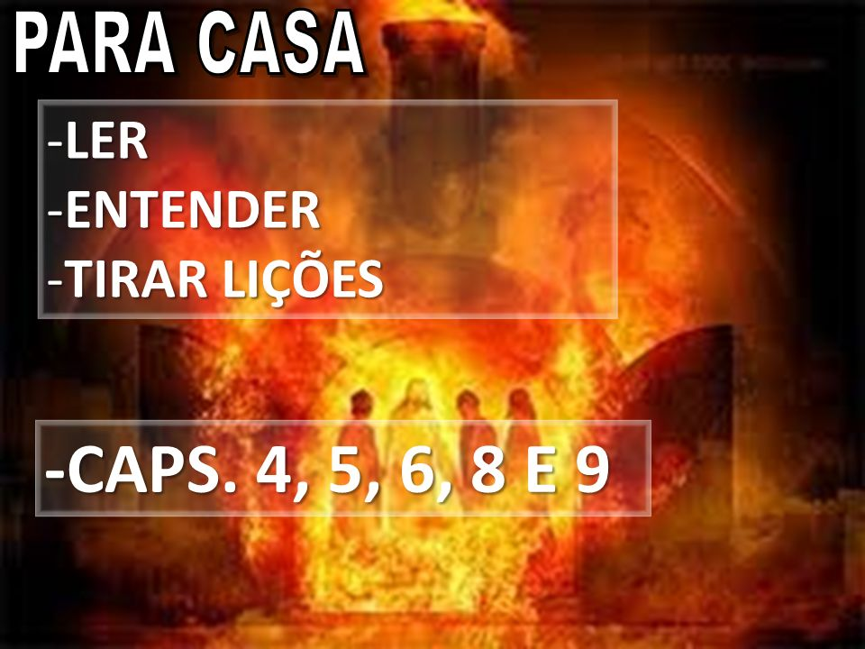 -CAPS. 4, 5, 6, 8 E 9 -LER -ENTENDER -TIRAR LIÇÕES